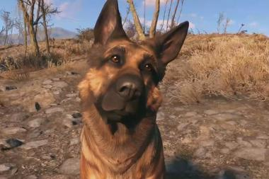 Fallout 4 - מעריץ מקדיש שיר שלם לכבוד הכלב דוגמיט