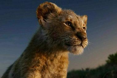 ביקורת: מלך האריות - המלך הוא עירום