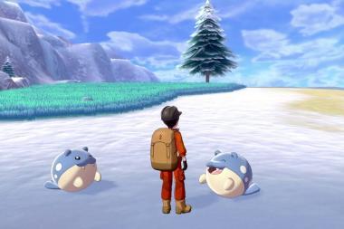 נחשף תאריך היציאה של ההרחבה השנייה של Pokemon Sword and Shield