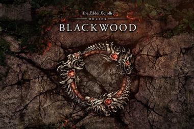 ביקורת: The Elder Scrolls Online: Blackwood - לגיהינום וחזרה