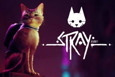 המשחק Stray מקבל דמו חדש ונדחה לתחילת 2022